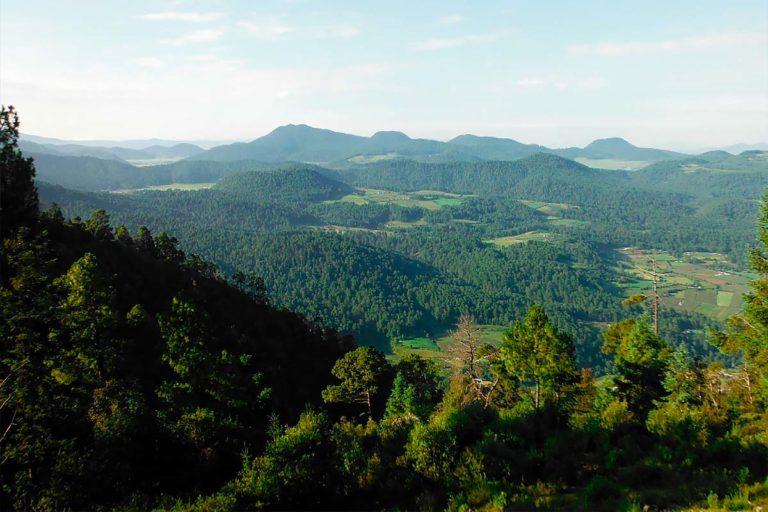 Archivo-CCMSS-bosques-mexico-amanalco-valle-de-bravo